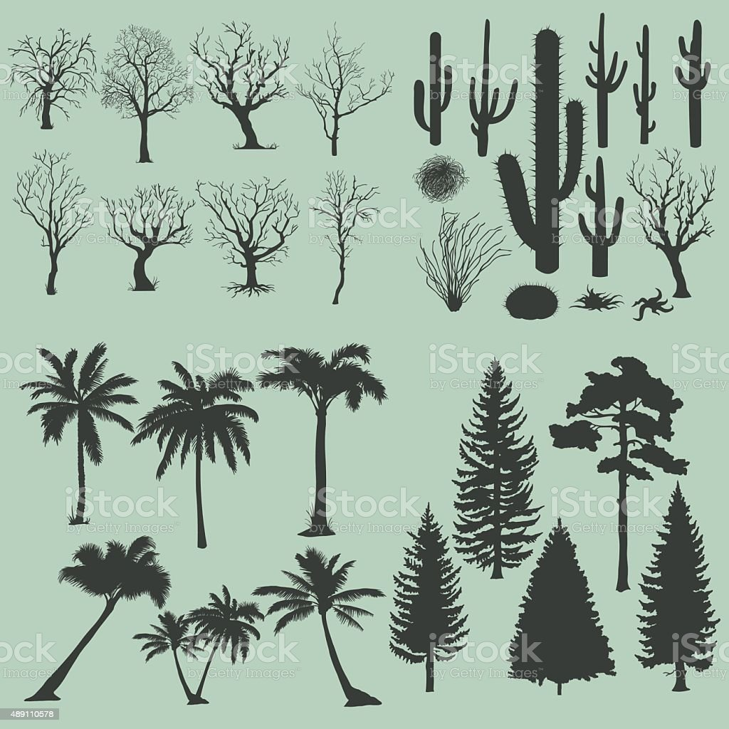 Vector Big Set of Trees and Plants Silhouettes. vector art illustration