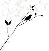 vector bird on branch illustration