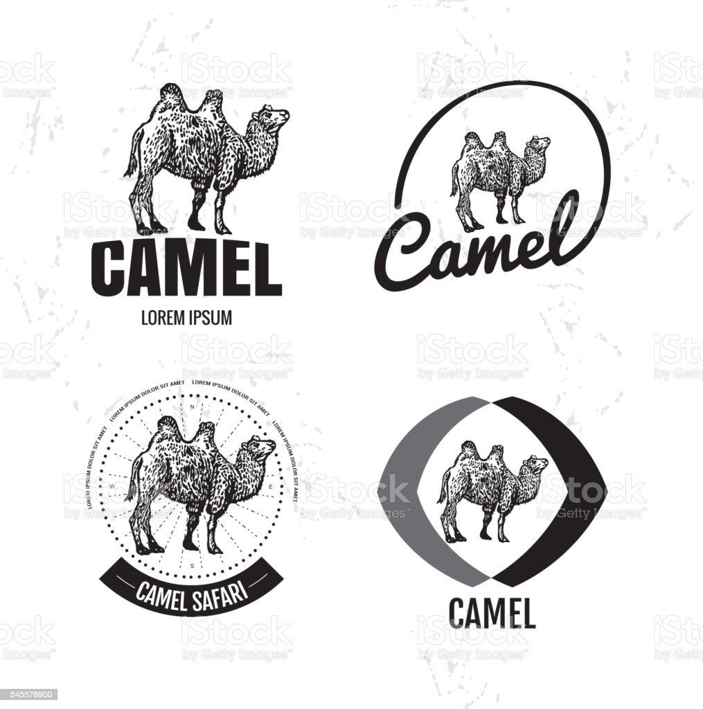 Vector black and white logo set with desert camel. vector art illustration