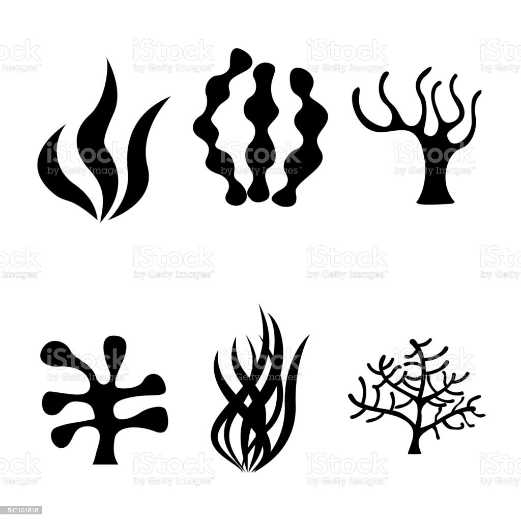 Vector black seaweed icons set vector art illustration