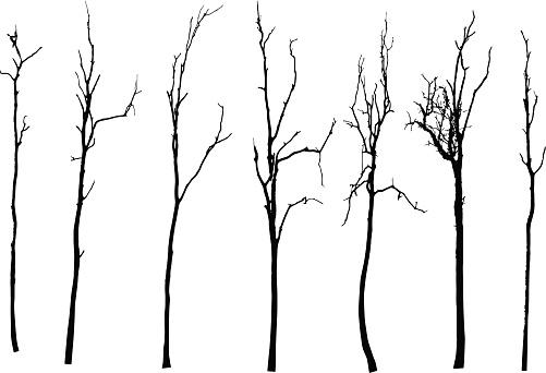 Branch Clip Art Vector Images Amp Illustrations Istock