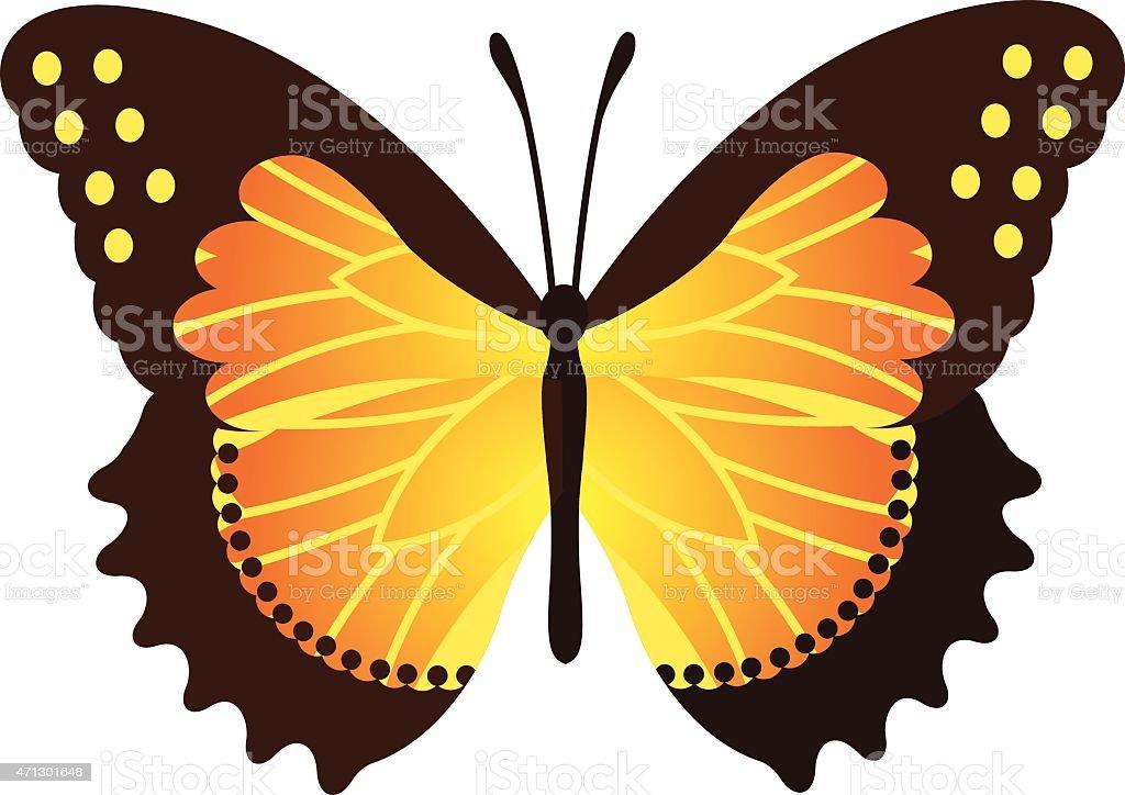 Vector Butterfly Illustration vector art illustration