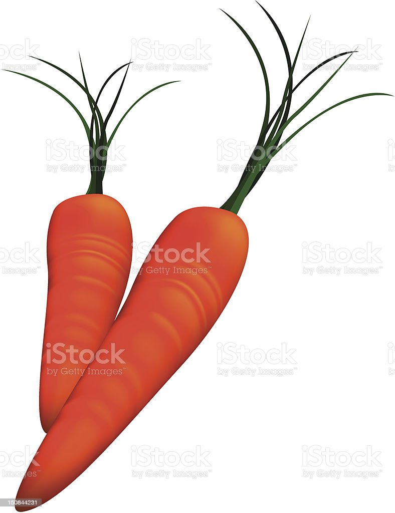 Vector carrots royalty-free stock vector art