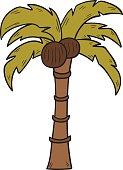 Vector cartoon isolated coconut palm