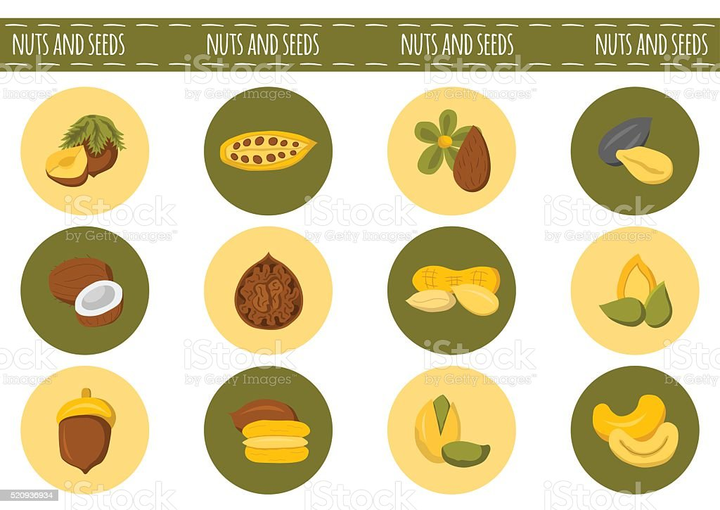 Vector cartoon nuts and seeds icons vector art illustration