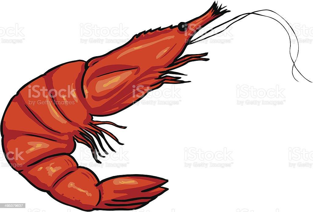 Vector Cartoon Shrimp vector art illustration