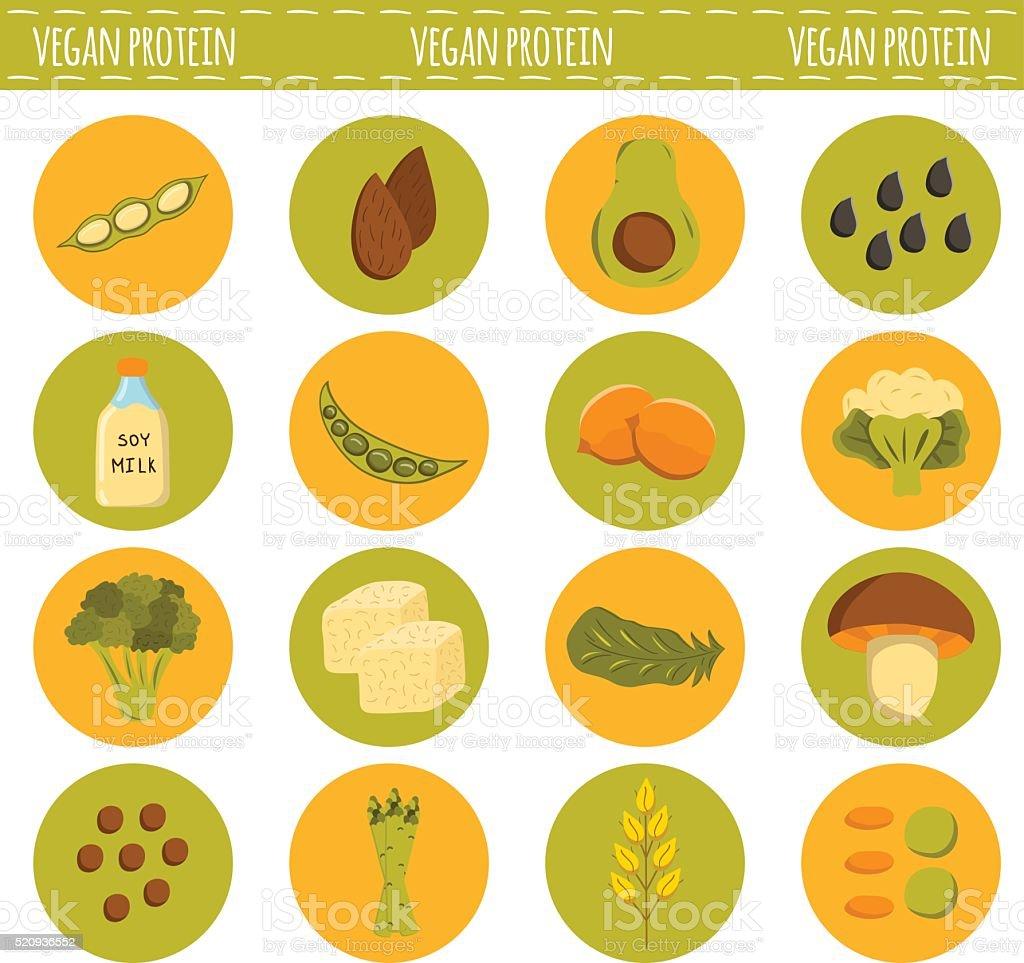 Vector cartoon vegan sources of protein vector art illustration