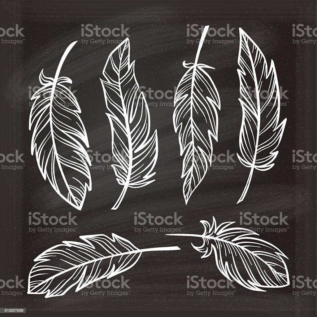 Vector chalk graphic feathers set. vector art illustration