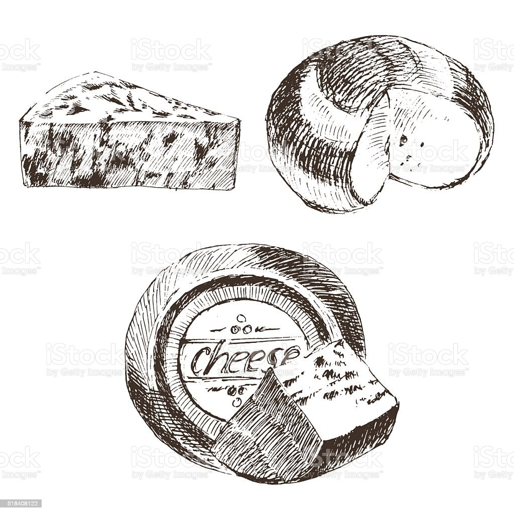vector cheese sketch drawing designer template. farm food collection. hand vector art illustration
