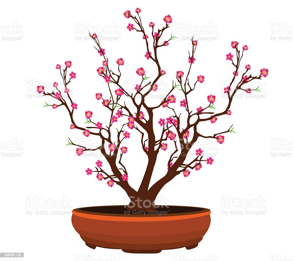 Vector Cherry blossom for Chinese and lunar New Year vector art illustration