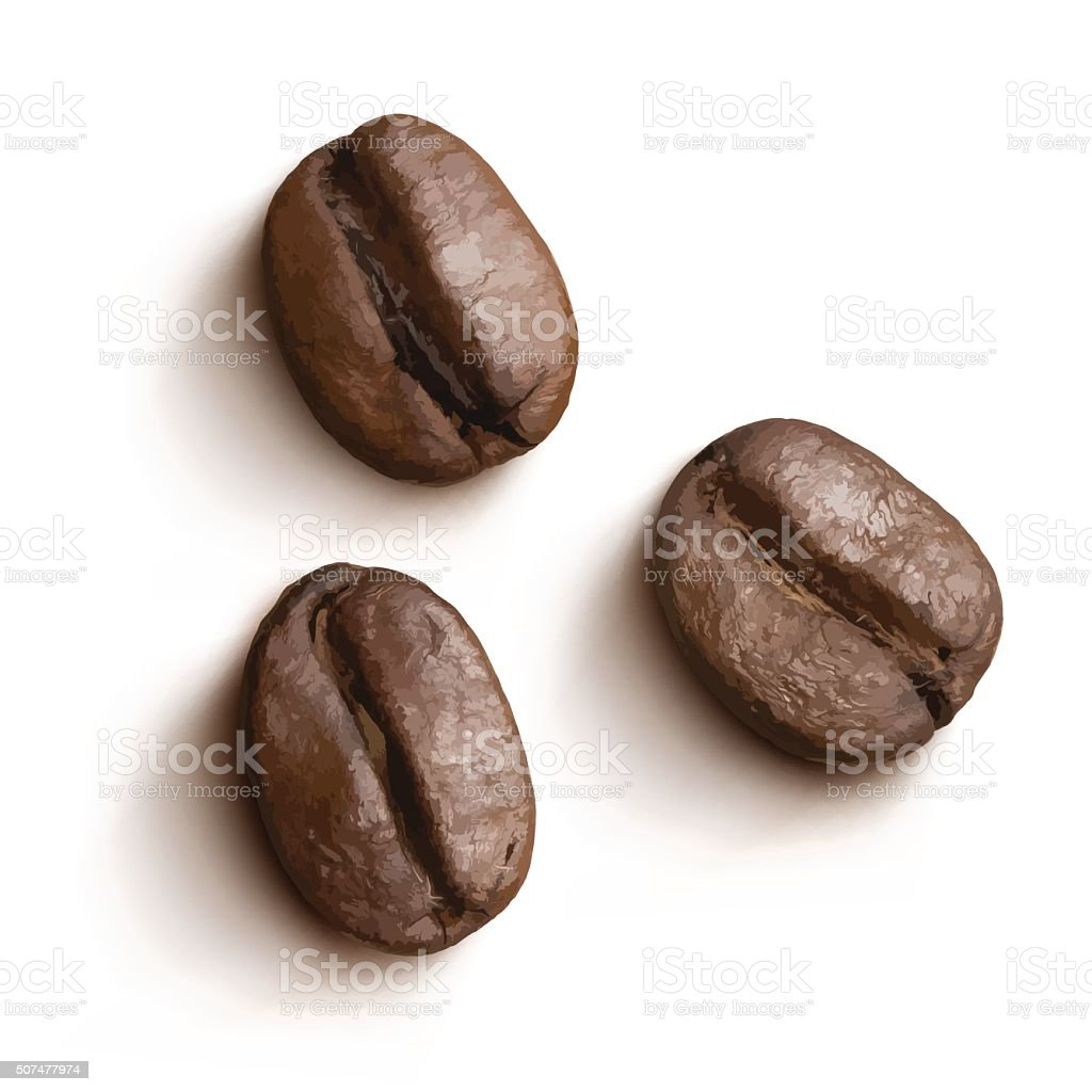Vector coffee beans isolated. vector art illustration