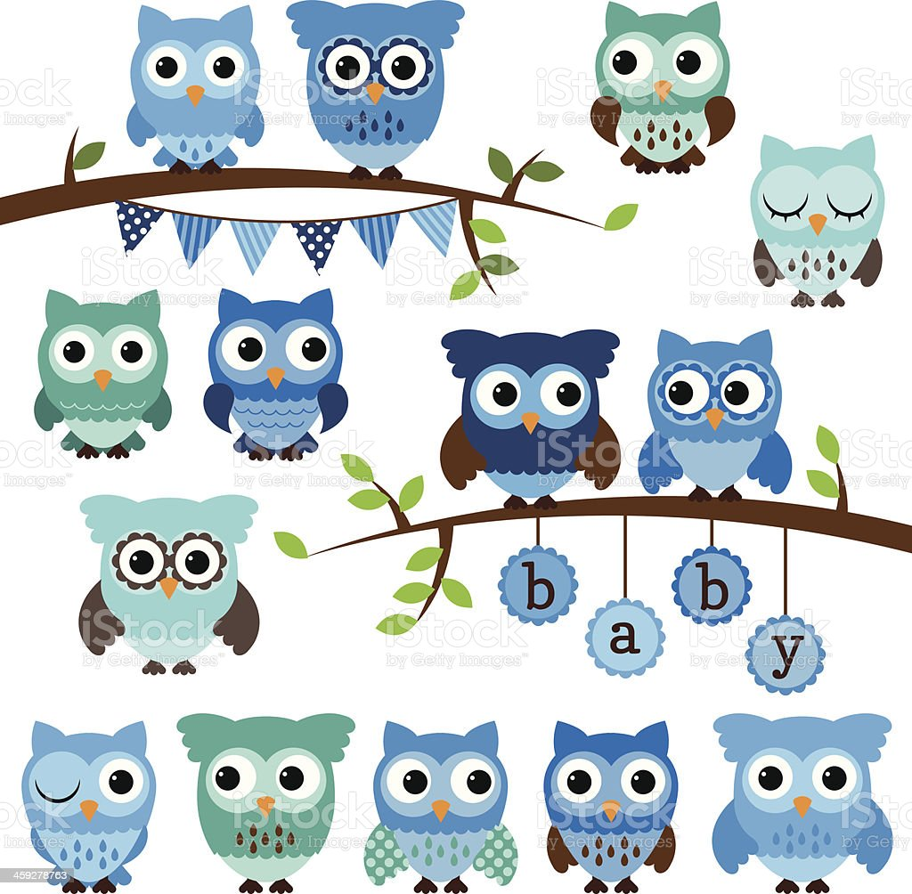 Vector Collection of Boy Baby Shower Themed Owls and Branches vector art illustration