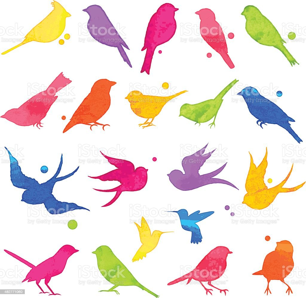 Vector Collection of Bright Watercolor Bird Silhouettes vector art illustration