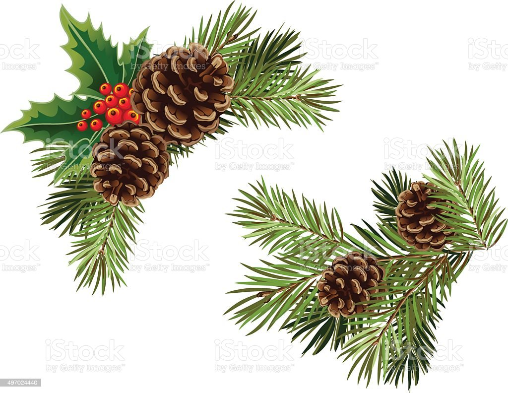 Vector collection of Christmas tree branches vector art illustration