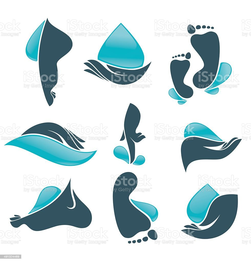 vector collection of clean women hands and foot vector art illustration