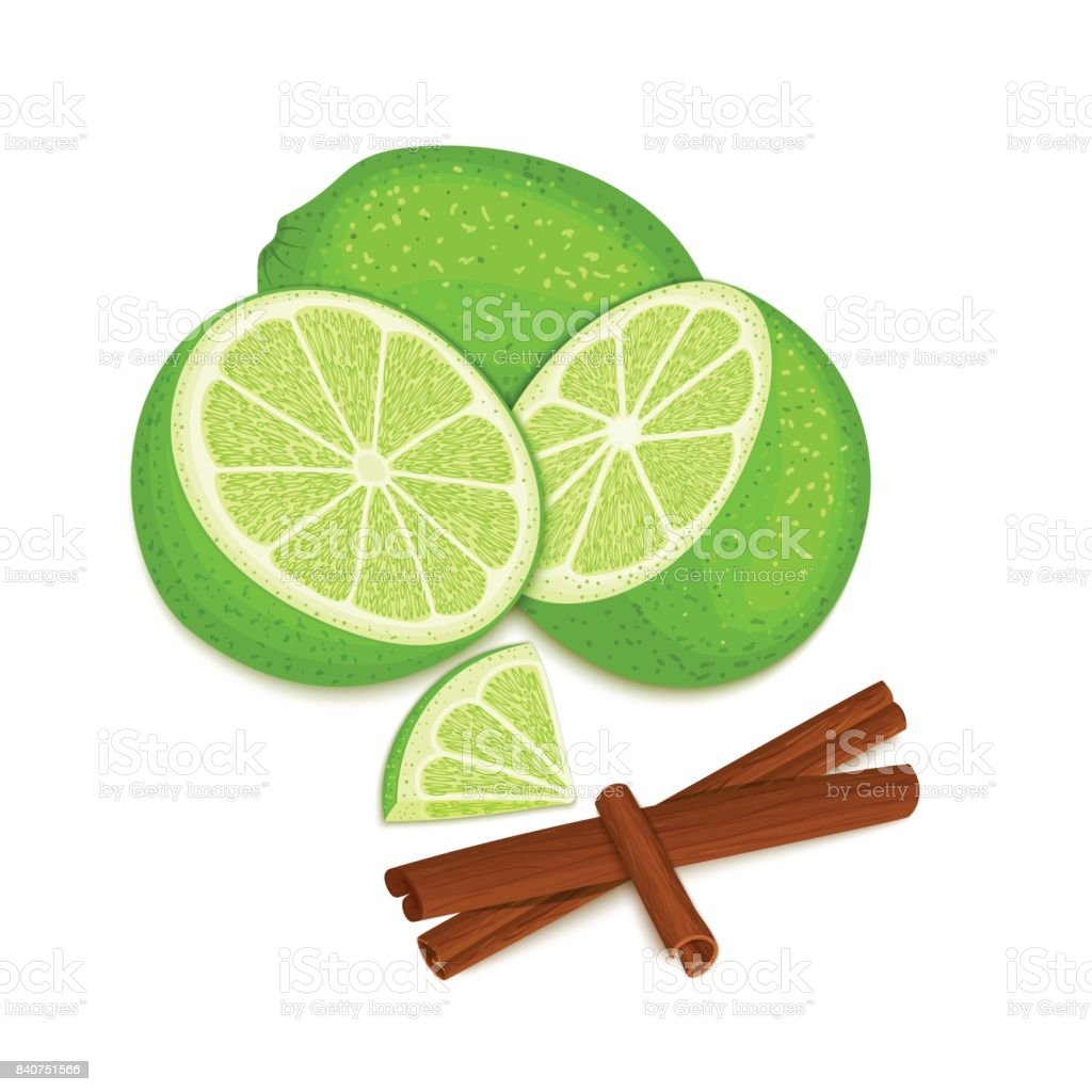 Vector composition of a citrus lime fruit and spice. Green limes whole and cut and cinnamon stick. Group of tasty fruits colorful design for the packaging of juice, breakfast, healthy eating, vegan. vector art illustration