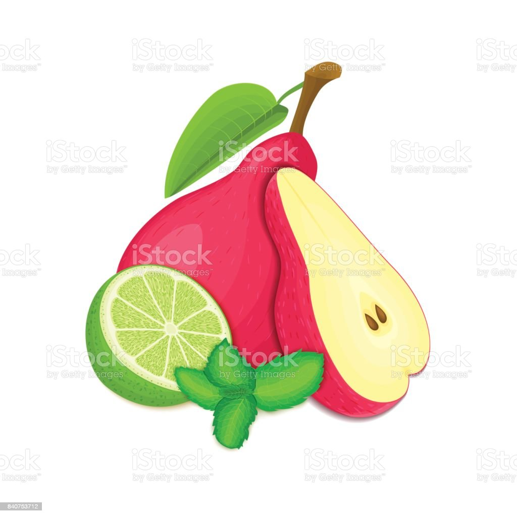 Vector composition of a few red pears citrus lime and mint leaves. Red pear fruits and tropical lime. Group of tasty ripe fruit with pepper mint leaf design of juice breakfast healthy vegan food vector art illustration