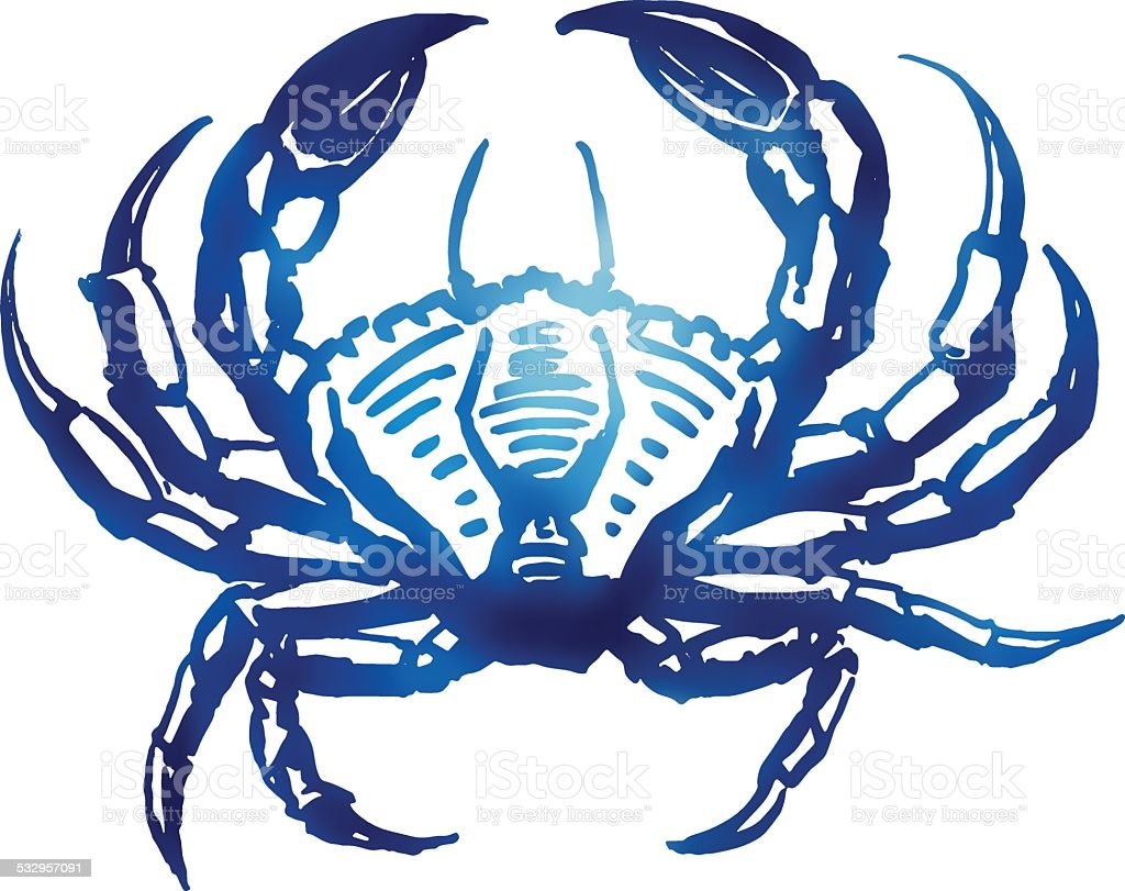 Vector crab sketch. vector art illustration