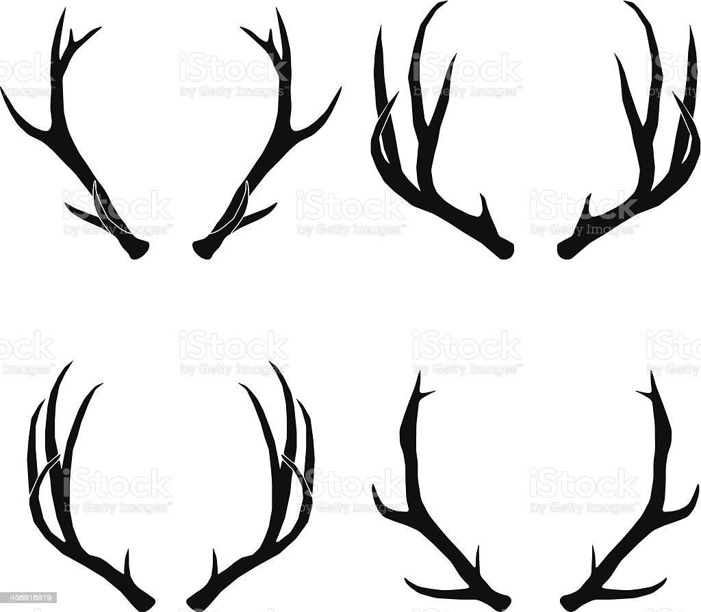 The gallery for --> Deer Antler Illustration