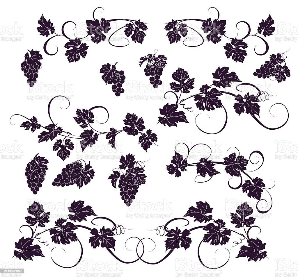 Vector design elements in vintage style with vines. vector art illustration