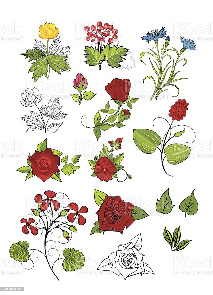 vector design set: flowers royalty-free stock vector art