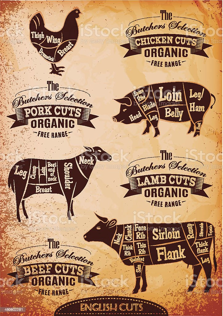 vector diagram cut carcasses chicken, pig, cow, lamb vector art illustration
