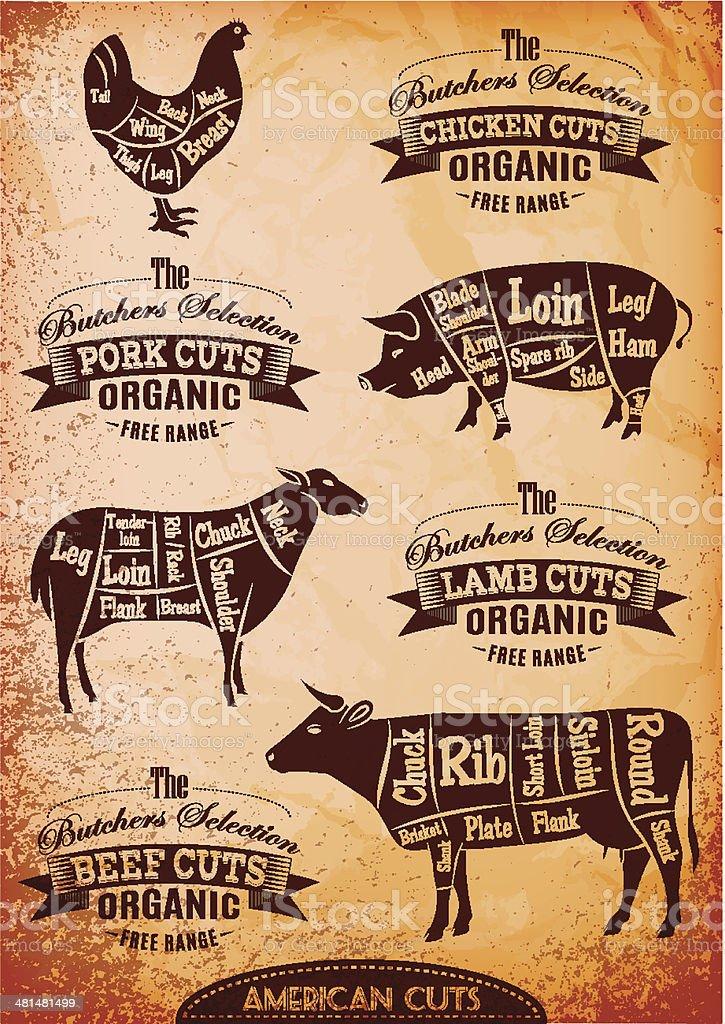 vector diagram cut carcasses chicken, pig, cow, lamb royalty-free stock vector art