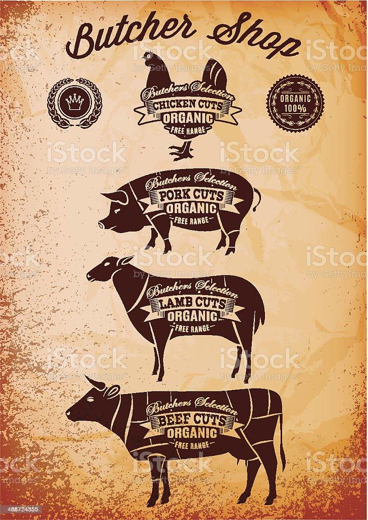 vector diagram cut carcasses chicken, pig, cow, lamb vector art illustration