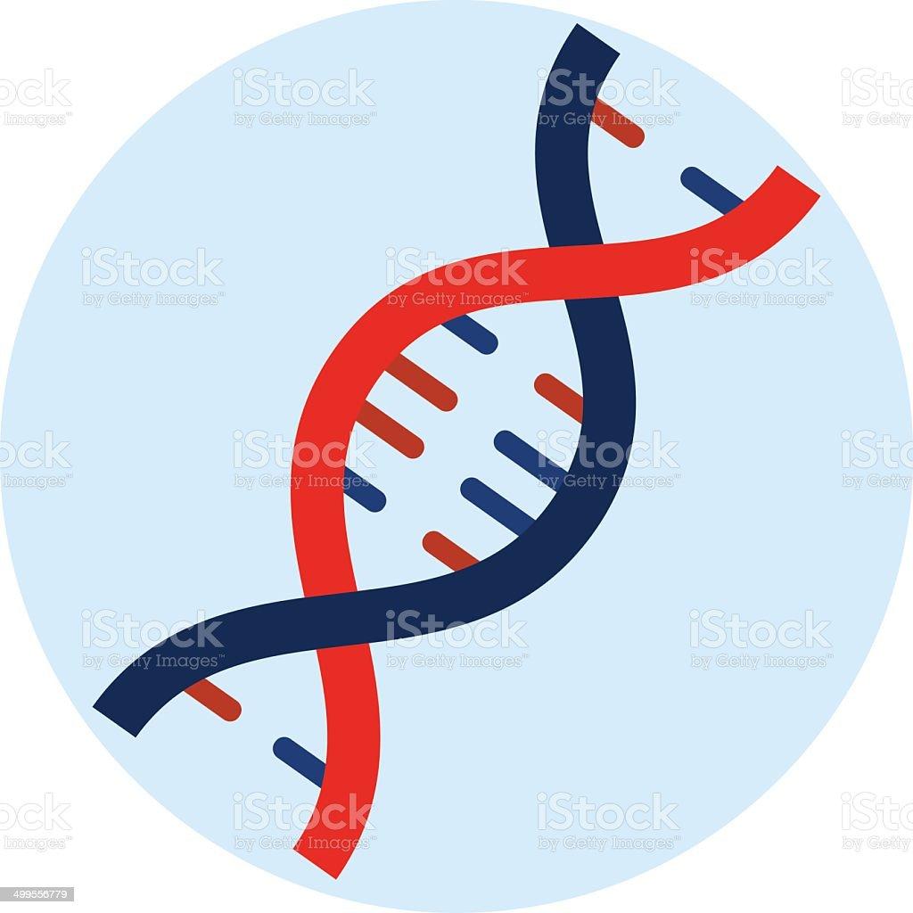 Vector DNA  flat icon vector art illustration