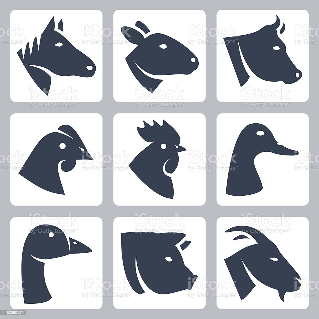 Vector domesticated animals icons set vector art illustration