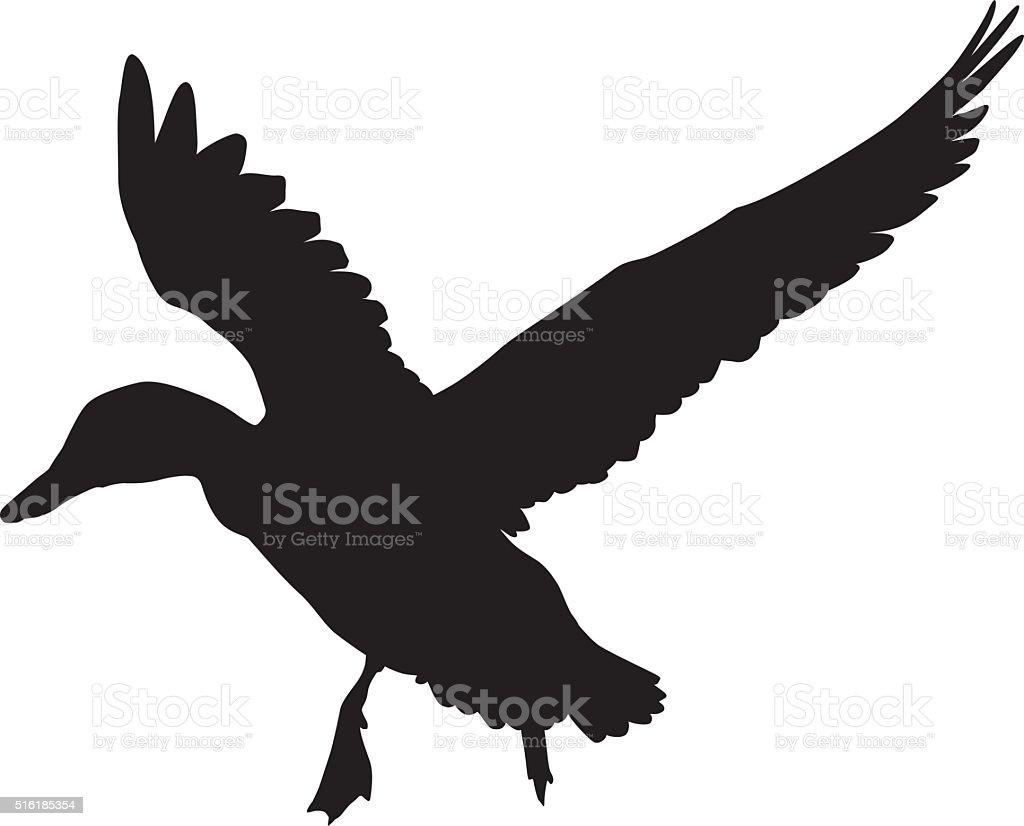 Vector duck vector art illustration