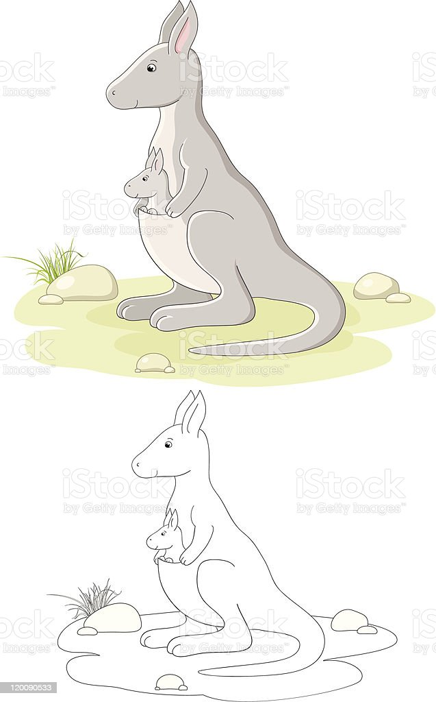 Vector family of kangaroo royalty-free stock vector art