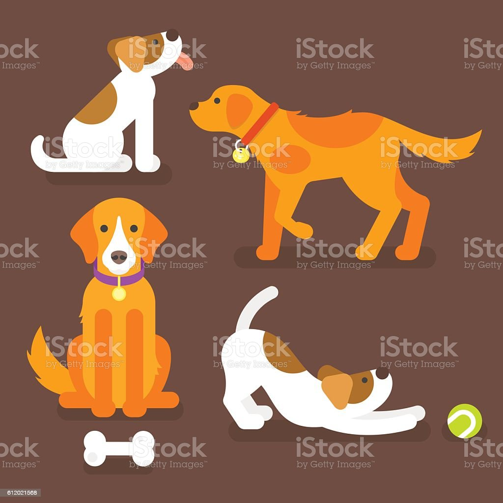 Vector flat style illustration of funny dogs vector art illustration
