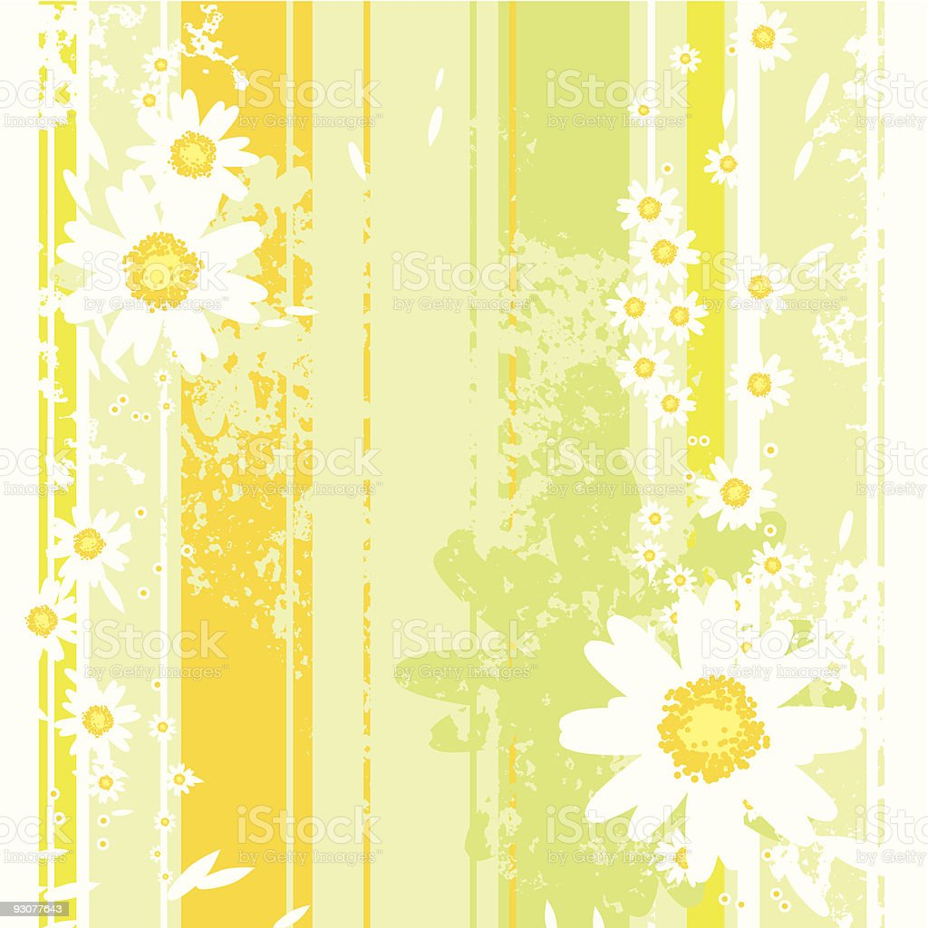 Vector Floral Background with Camomiles royalty-free stock vector art