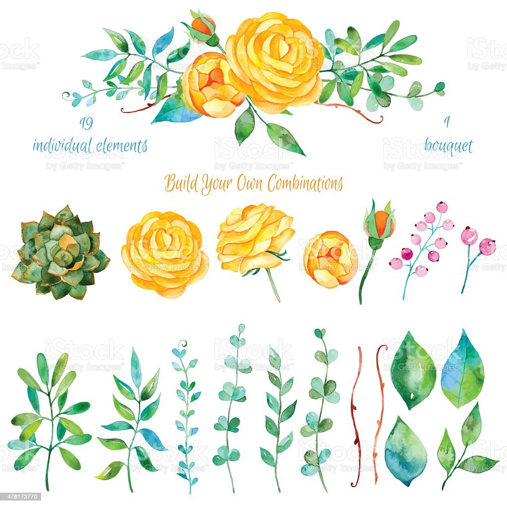 Vector floral set.Colorful floral collection with leaves and flowers, drawing watercolor vector art illustration