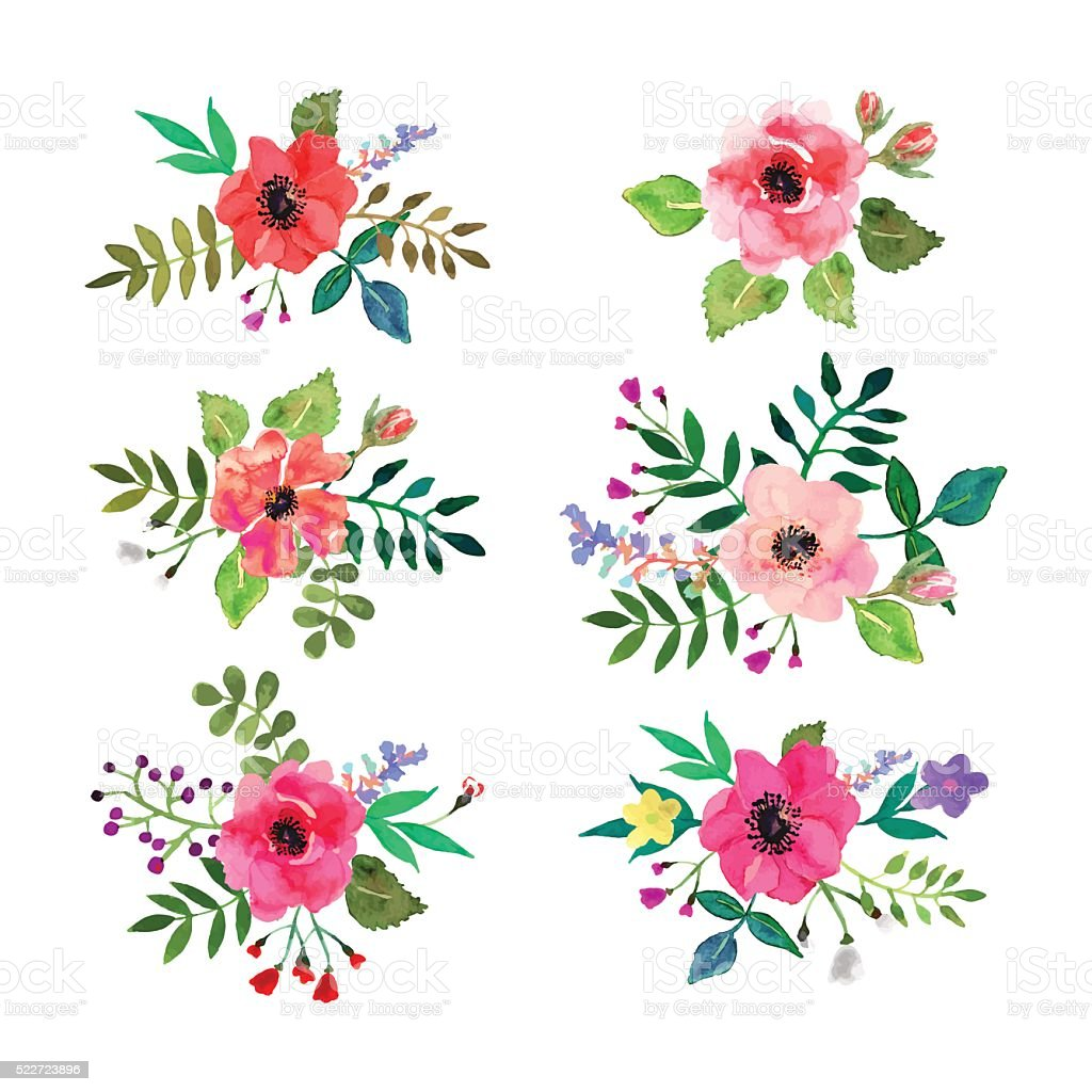 Vector flowers set. Floral collection with watercolor leaves and flowers. vector art illustration