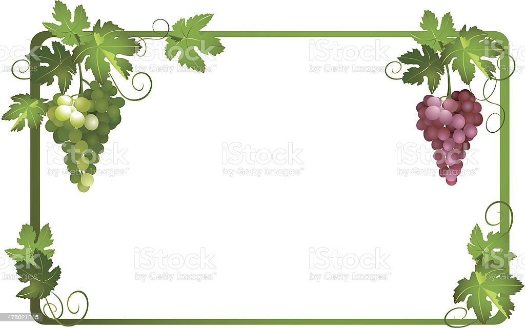 vector frame with ripe grapes royalty-free stock vector art