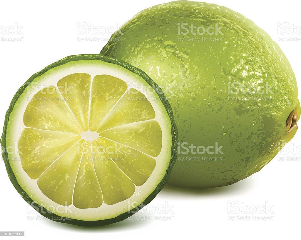 Vector fresh lime vector art illustration