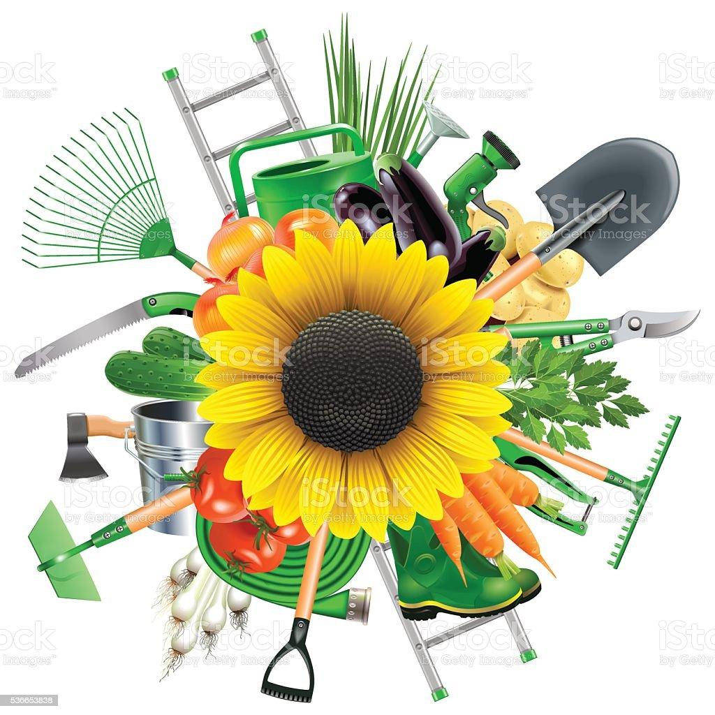 Vector Garden Accessories with Sunflower vector art illustration