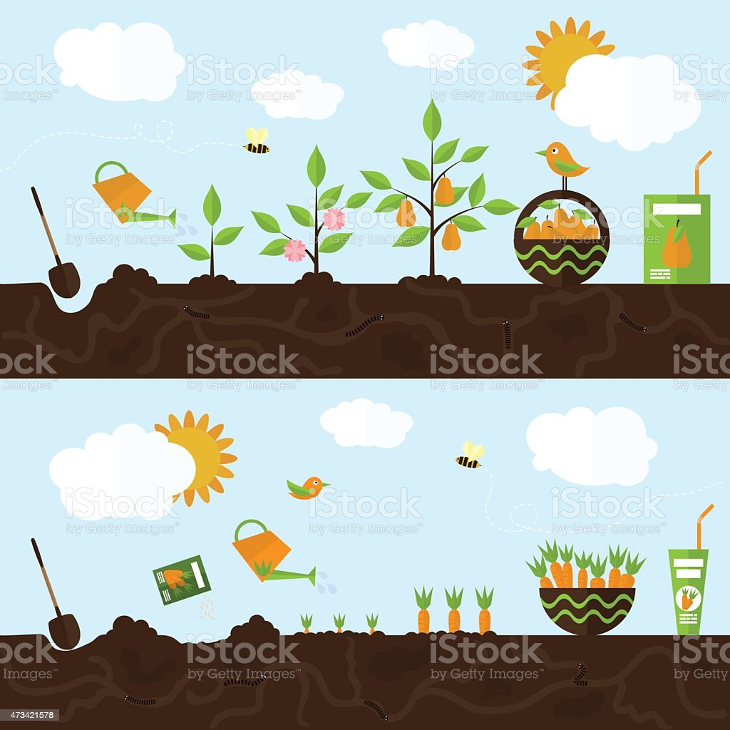 Vector garden illustration in flat style. vector art illustration