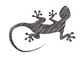 Vector gecko in pencil drawing style