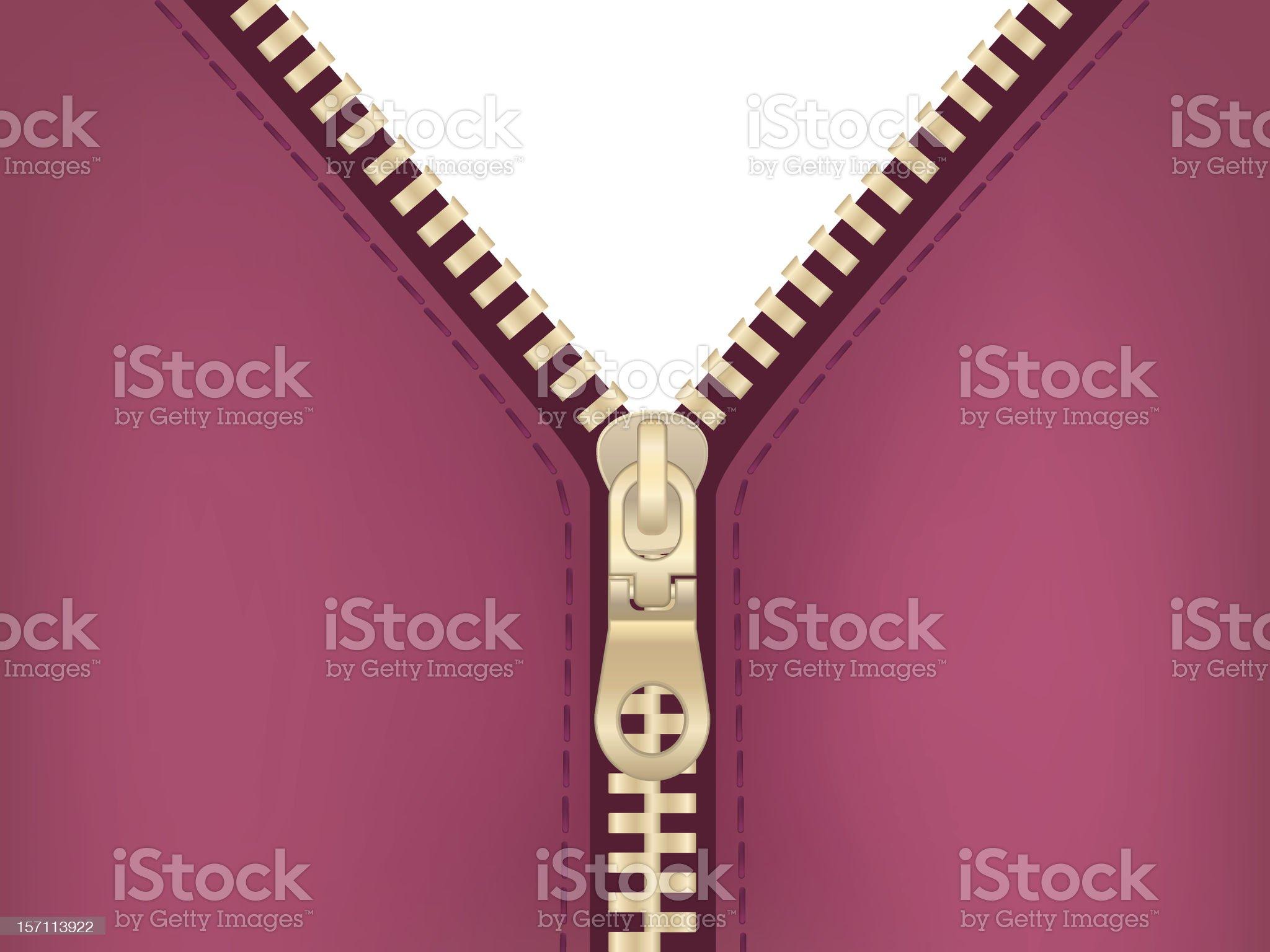 Vector golden zip royalty-free stock vector art