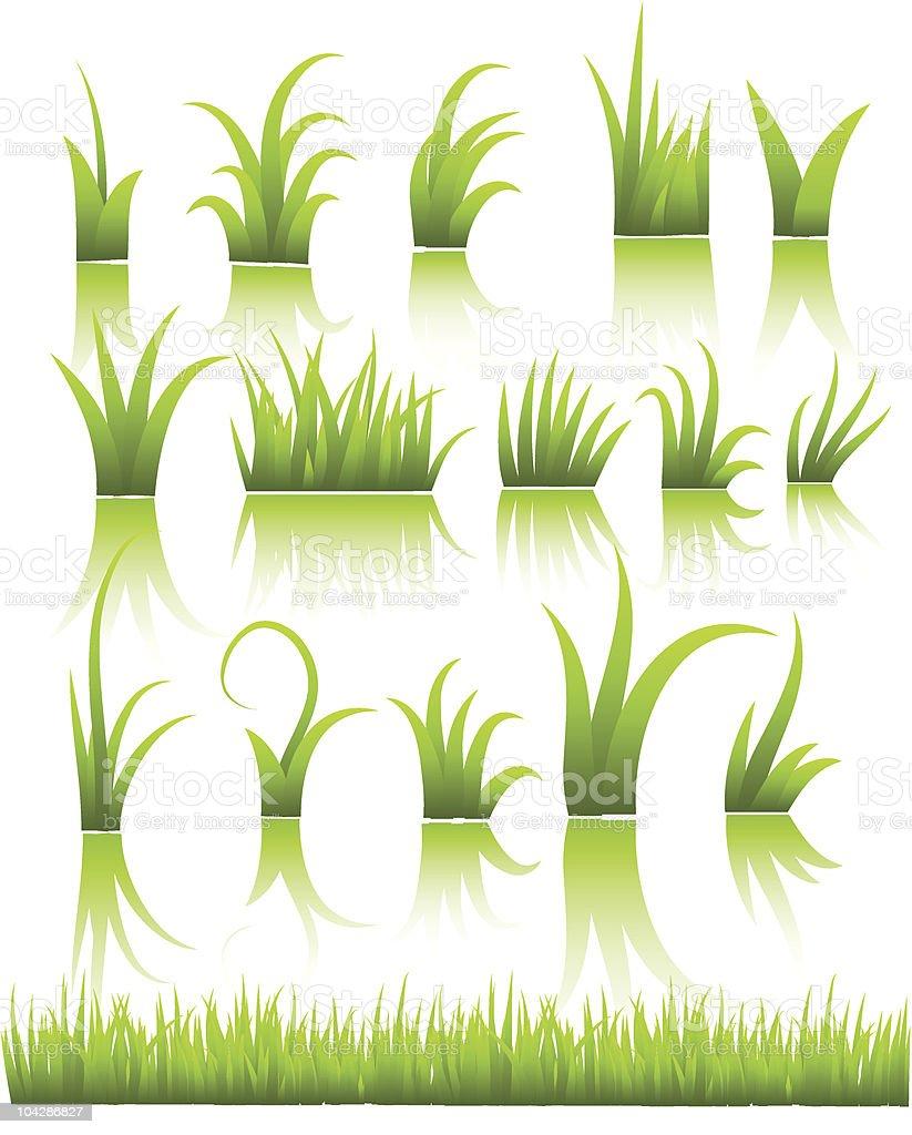 vector grass vector art illustration