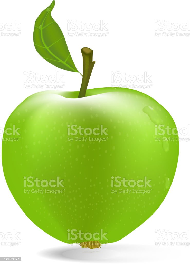 vector green apple with drops of dew royalty-free stock vector art
