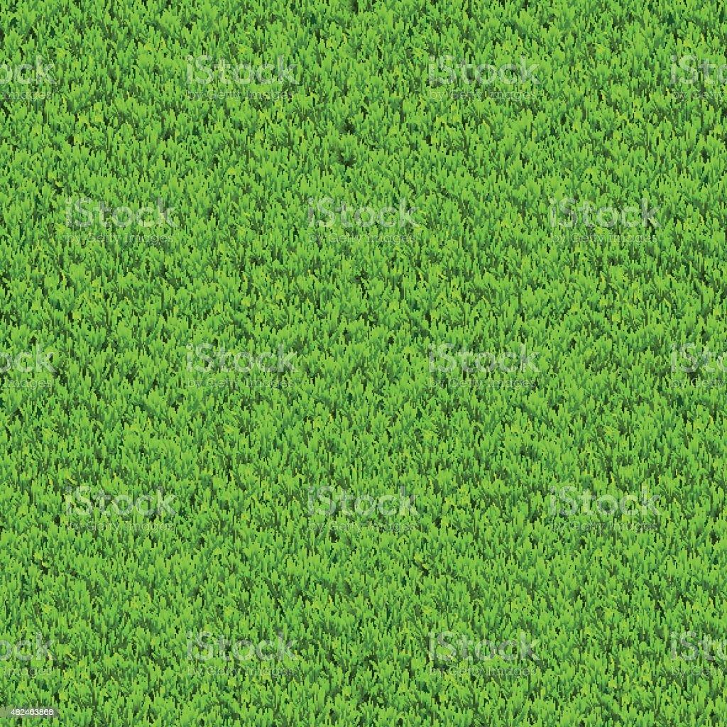 Vector green grass background. vector art illustration