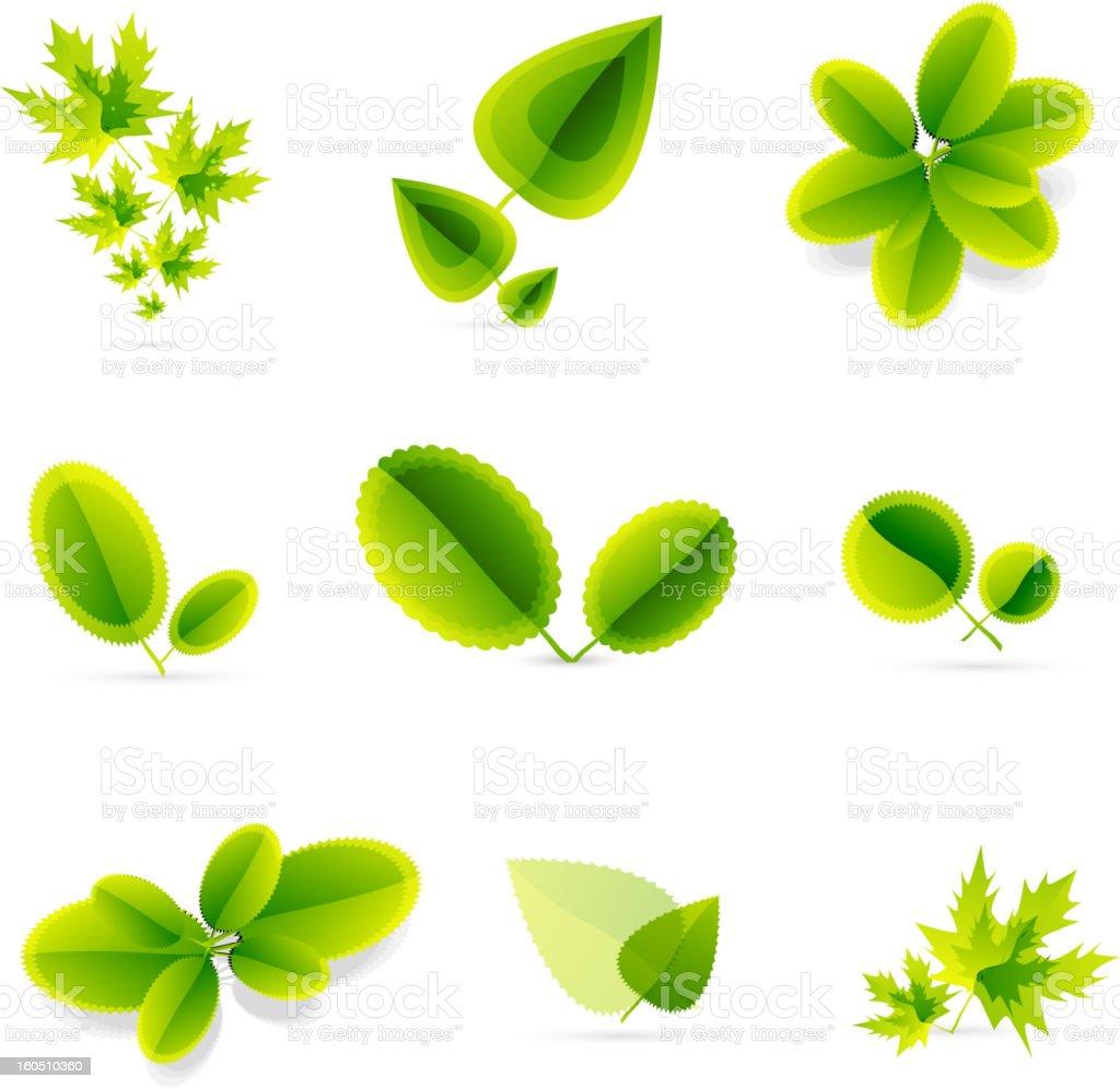 Vector green leaves royalty-free stock vector art