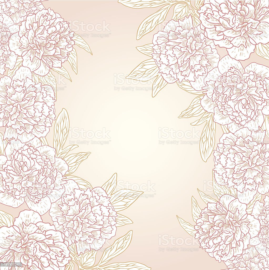 Vector greeting card with peonies. royalty-free stock vector art