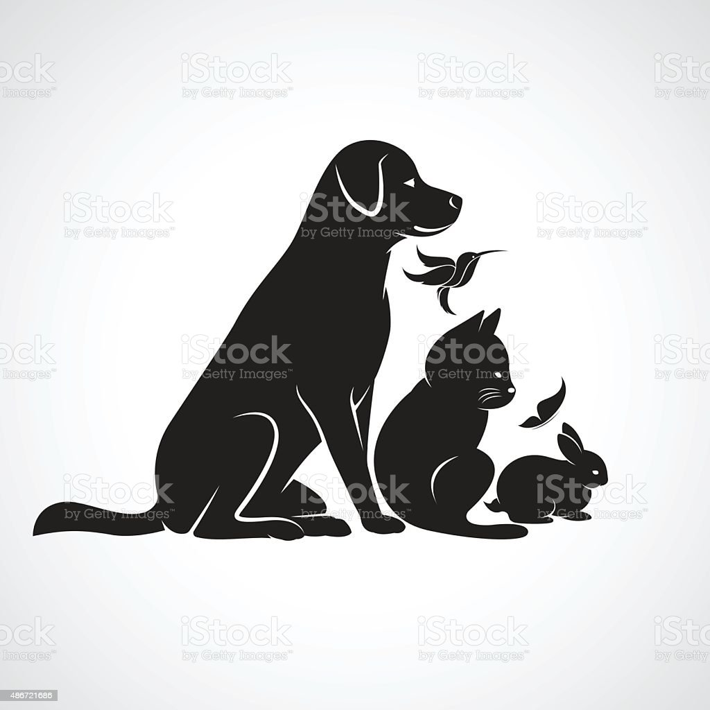 Vector group of pets vector art illustration