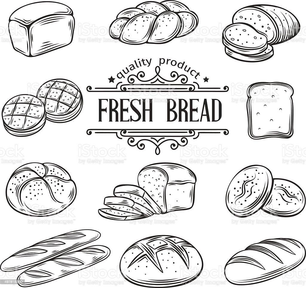 vector hand drawn decorative bread vector art illustration