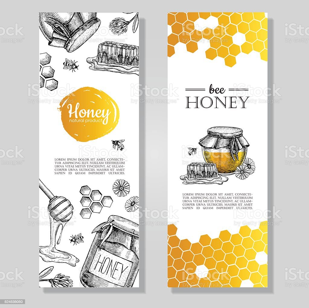 Vector hand drawn honey banners. Detailed honey engraved  illust vector art illustration